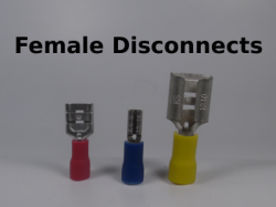 Female Disconnects